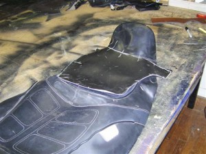 DSCI0989 (Custom)